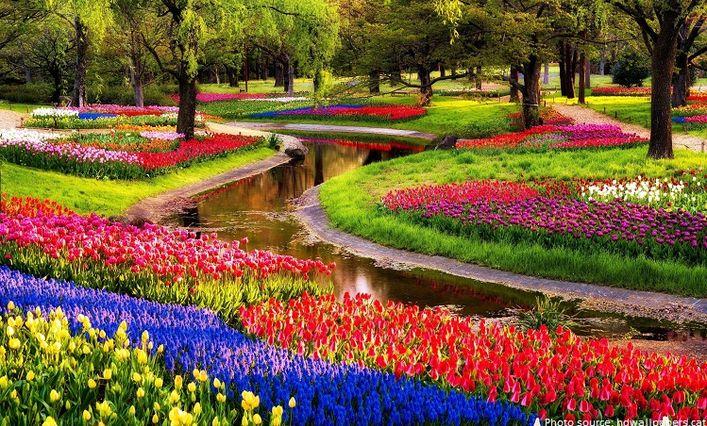Kaukenhof gėlių sodas
